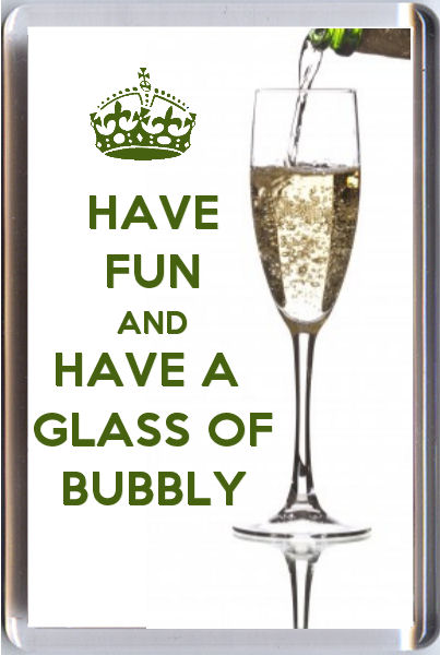 Have Fun And Have A Glass Of Bubbly Fridge Magnet 7 X 4 5cms Unique Christmas Gift Idea